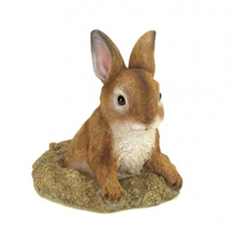 This little bunny is curious about what's going on in your yard! Place this darling sculpture in your garden and delight in his realistic details, from his subtle coloring to his fine fur. The base looks like a freshly dug hole in your yard, but who can be angry at a face like that?!