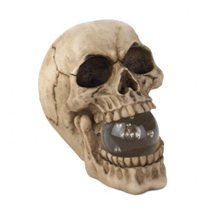Ghoulish glow and spooky style can be yours all year long with this cool polyresin figurine. This detailed skull holds a glass orb in his mouth that lights up with help from an LED bulb and three little batteries. Great for your entry way or porch on Halloween!
